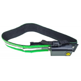 Hundehalsband Nightglow grün GSG